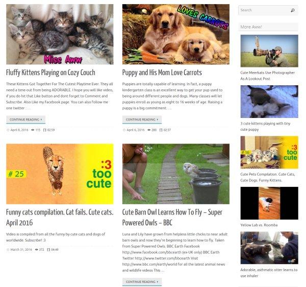 Video Query - YouTube, DailyMotion, Hulu, MixCloud, SoundCloud and Vimeo 1